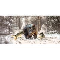 Фотообои с животными ZHV16C
